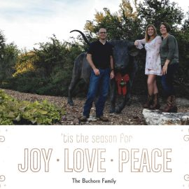 Merry Christmas From The Buchorn's + 2017 Year In Review