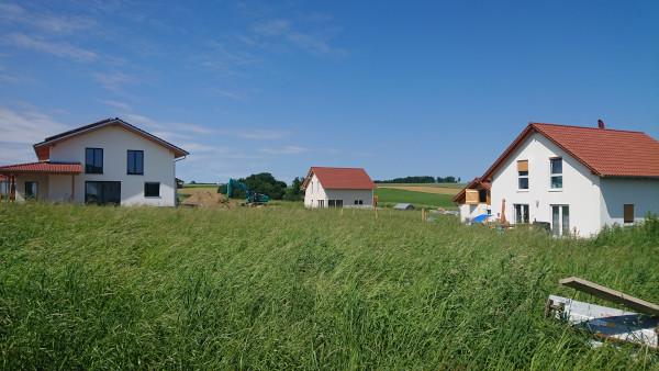 Grüne Wiese, somewhere anywhere