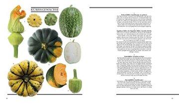Gemüse aus dem Bauerngarten: Vergessene und besondere Sorten - Grundrezepte - Gerichte von Starköchen - 6