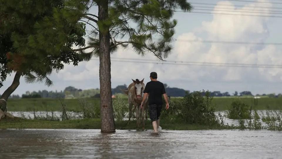 Las inundaciones deterioran la producción en Santa Fe foto: Archivo Emiliano Lasalvia / Enviado especial