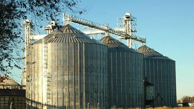 La estrategia de algunos grupos de siembra fue diversificar con el acopio de granos