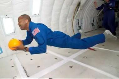 La NASA se interesó en el movimiento de los gatos al caer para enseñar a los astronautas a girar en entornos sin gravedad