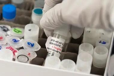 Los científicos avanzan en todos los terrenos de la investigación contra el nuevo patógeno