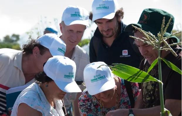 Las modificaciones del programa excluyen a la agricultura familiar y a productores extranjeros