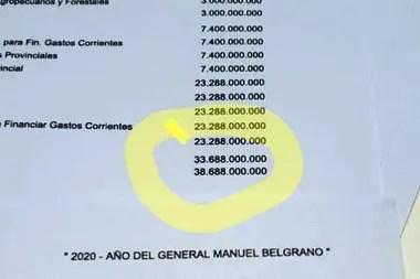 Coronavirus: partida presupuestaria entregada al Ministerio de Desarrollo Social para la compra de alimentos
