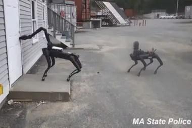 El video del operativo en que participaron los perros robot fue compartido por Boston Dynamics en una conferencia realizada por Techcrunch