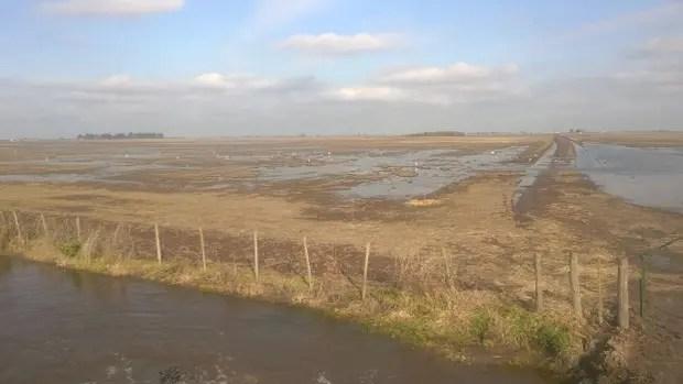 Los campos están saturados de agua
