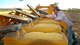 El proyecto de ley que impulsa el Ministerio de Agroindustria despierta la polémica
