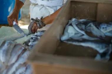 Andrea tiene un guante hecho con una malla de metal que le protege de los cortes tres dedos de la mano con la que sostiene los pescados para preparlos para la venta en el puerto de José Ignacio