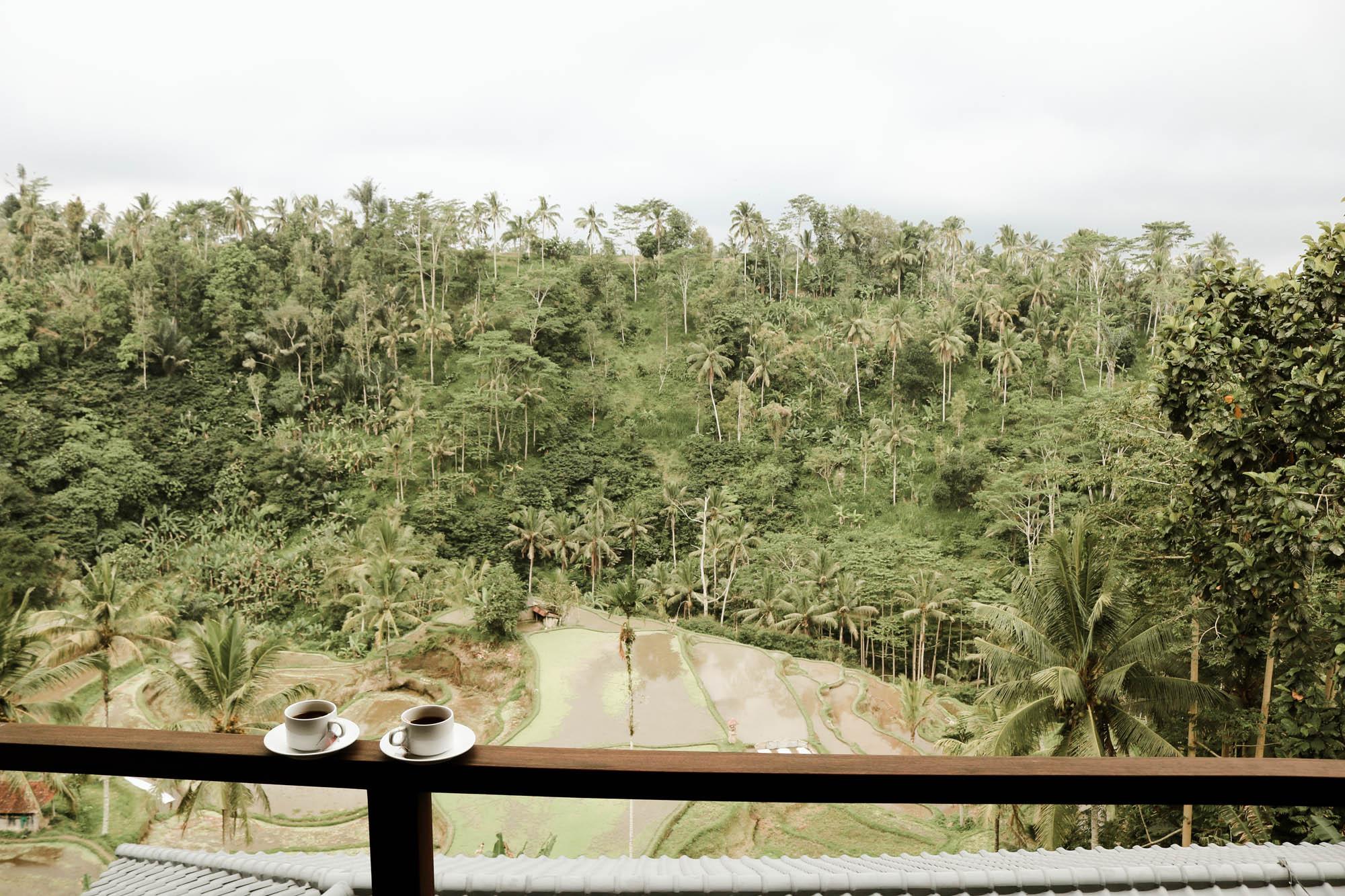 A Blissful Jungle Retreat In Ubud, Bali: Suarapura Resort