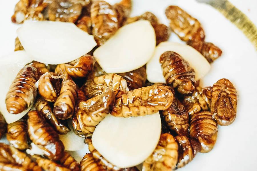 Beondegi Silkworm meal