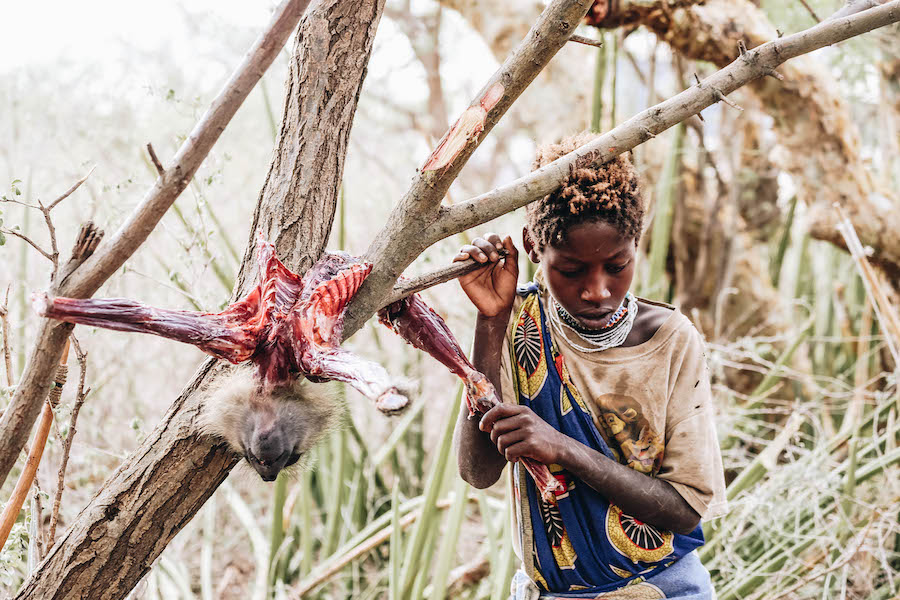 Hadzabe Tribe in Tanzania Africa eating bushmeat