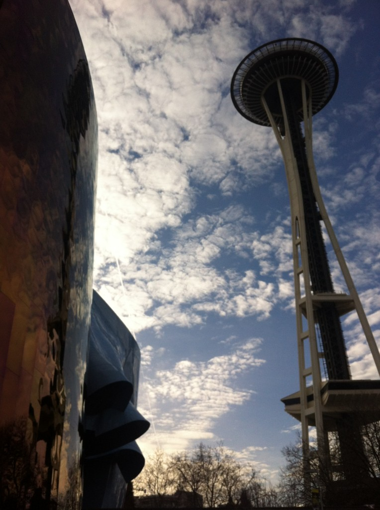 View of Space Needle from EMP