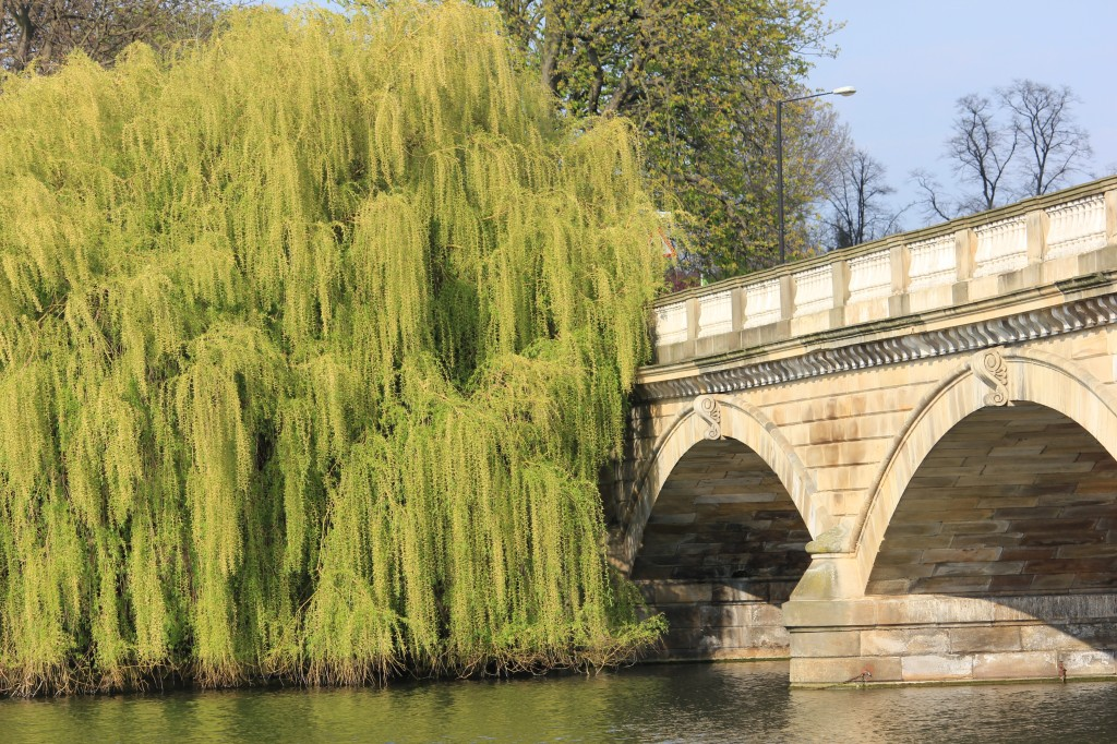 Serpentine Bridge at Hyde Park