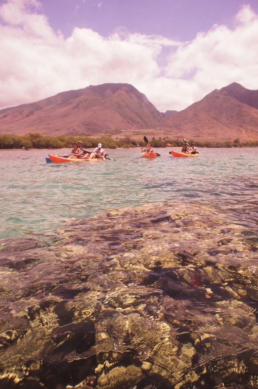 Kayaking in Olowalu