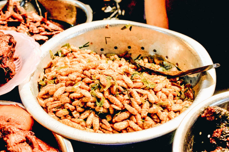 Fried Silkworms in a Bowl