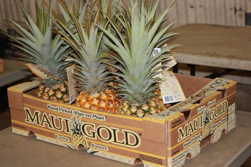 Maui Pineapple Farm in Hali'imaile
