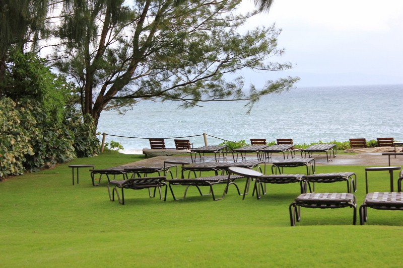 Grounds at the Ritz in Kapalua