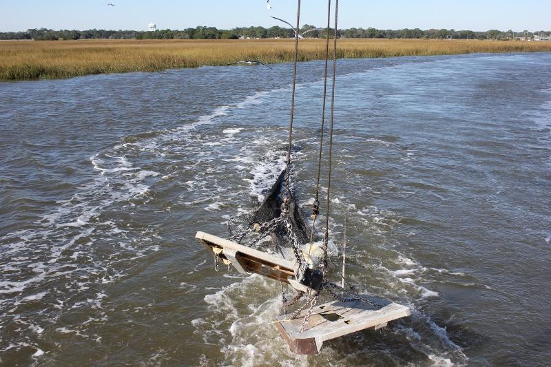 Pulling the Shrimping Net