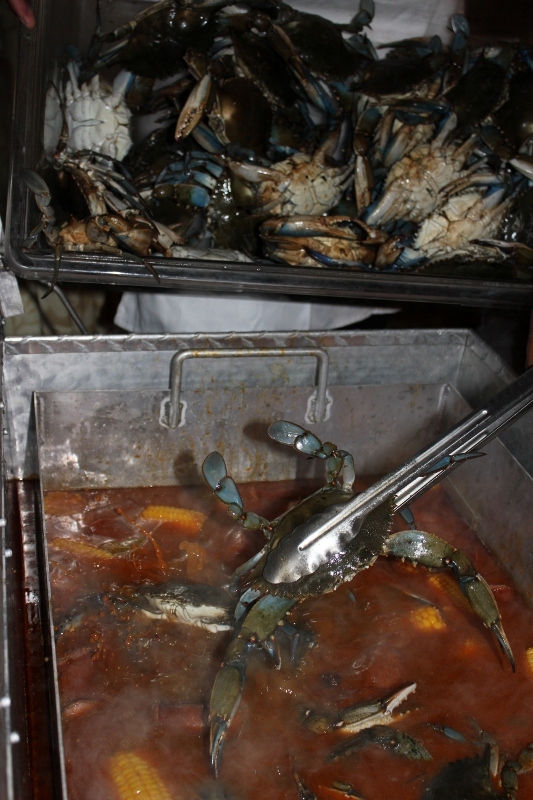 Blue Crab added to the Low Country Boil