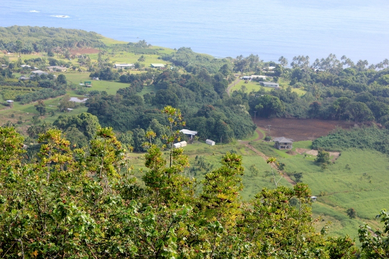 Wailua Valley State Wayside: One of the Best Road to Hana Stops on the Hawaiian Island of Maui