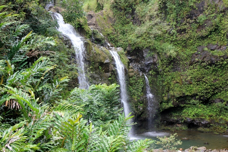 Best Things to do in Maui: Waimoku Falls on the Road to Hana Stops