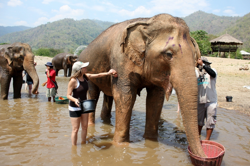 Volunteer with Elephants: Life List: 100 Amazing Things To Do Before You Die