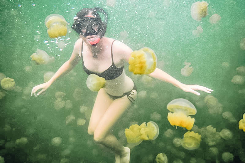 swimming in Jellyfish Lake in Palau
