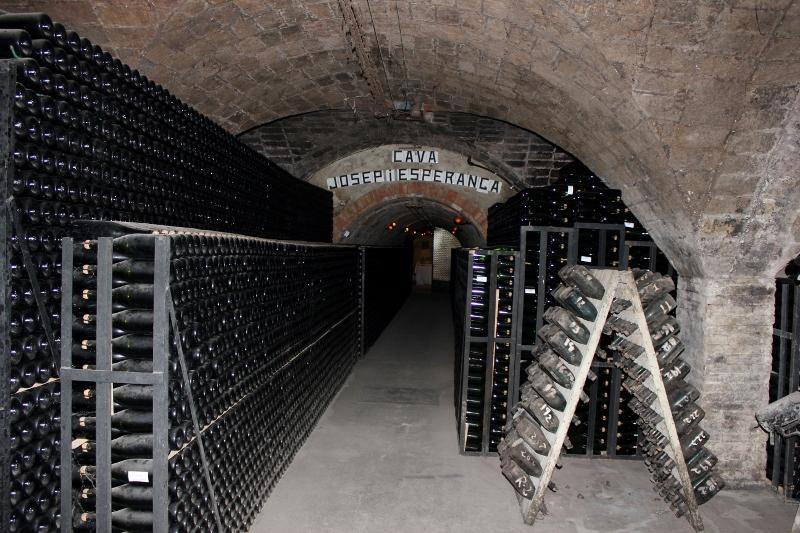 Gramona Cava Cave in Spain