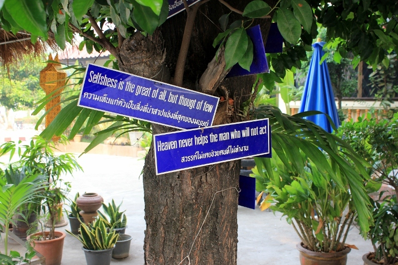 Monk Chat at Wat Chedi Luang Chiang Mai