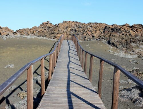 Hike to the top of Bartolome Island in the Galapagos