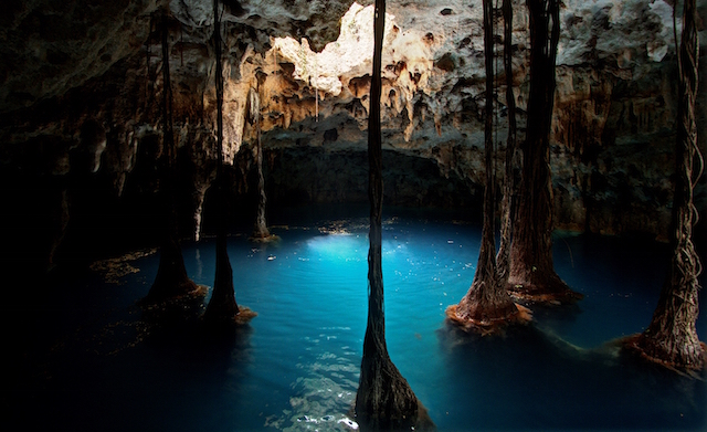 A Mexican Cenote in Cancun