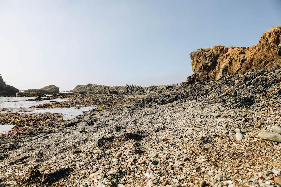 Sea Glass in Fort Bragg California