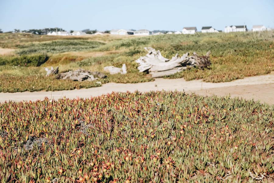 Northern California's Fort Bragg's Glass Beach