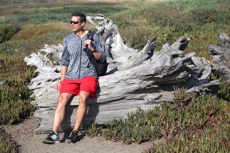 Driftwood at Glass Beach Fort Bragg