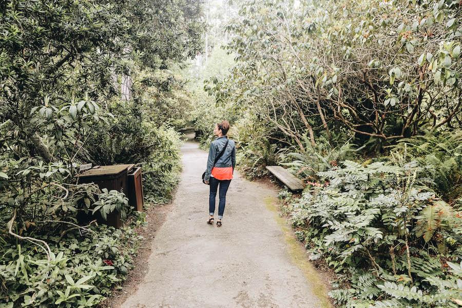 Mendocino Coast Botanical Gardens in Fort Bragg