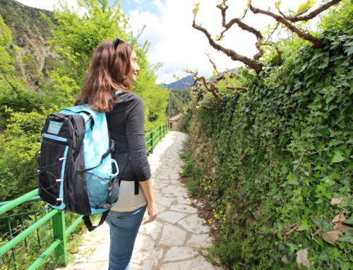 The Perfect Travel Backpack Giveaway