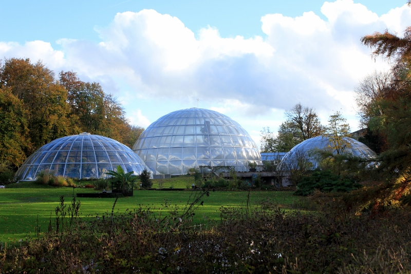 Glass Biodomes at the Zurich Botanical Gardens