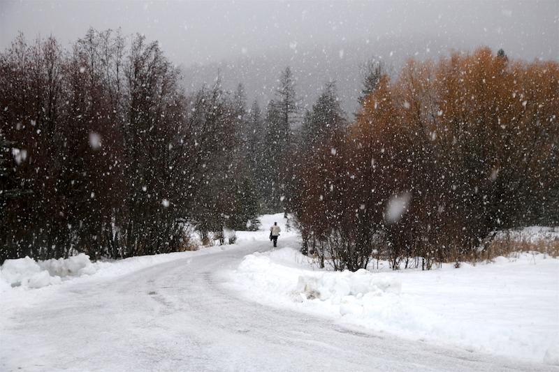 Snowfall in Bigfork, Montana