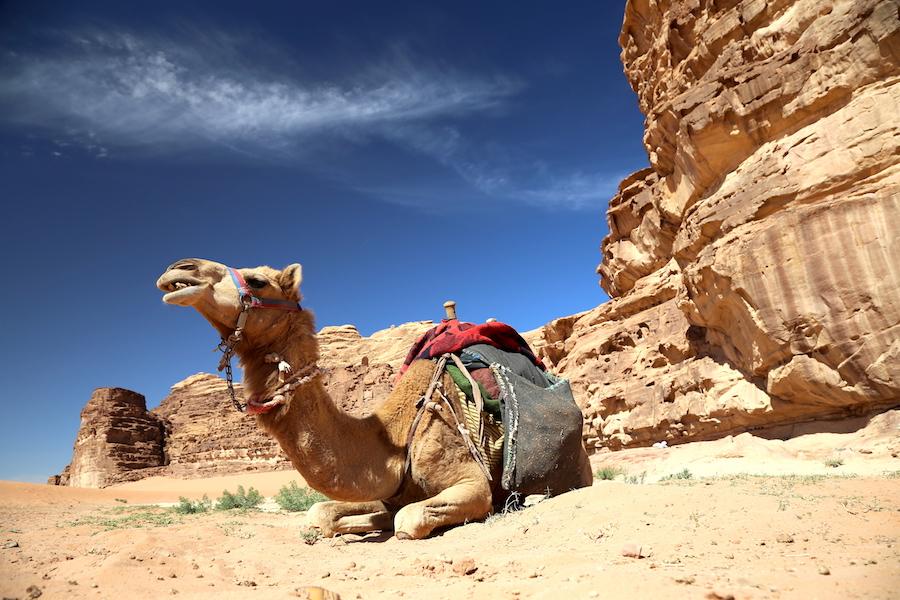 Wadi Rum Jordan: Top Historical Places: 10 UNESCO World Heritage Sites Around the World