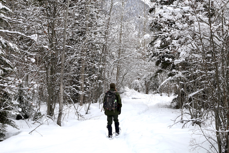 Snowshoeing while it's snowing in Glacier National Park Montana