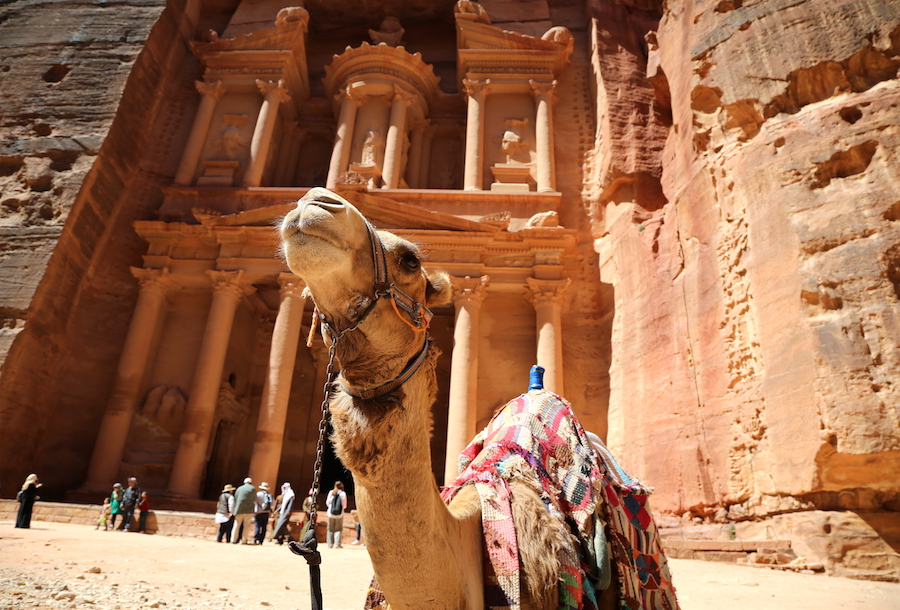 Camel in front of the Treasury in Petra Jordan: Top Historical Places: 10 UNESCO World Heritage Sites Around the World