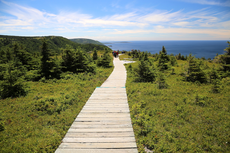 The Skyline Trail: Nova Scotia Bucket List: 20 of the Best Things To Do When You Visit