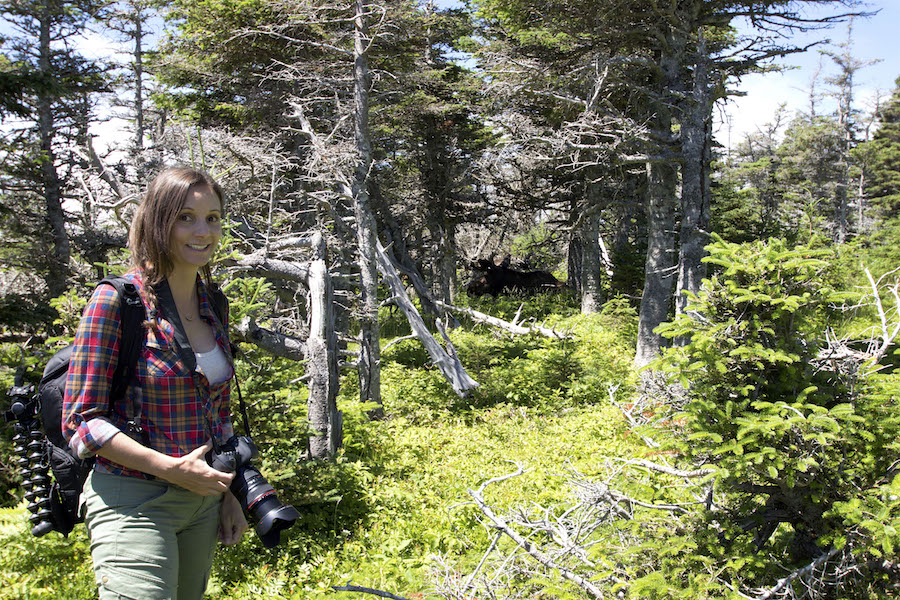 Annette White spotting a moose while hiking the Skyline Trail in Cape Breton Highlands national Park