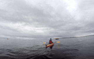 Kayaking with Beluga Whales in Churchill, Manitoba, Canada