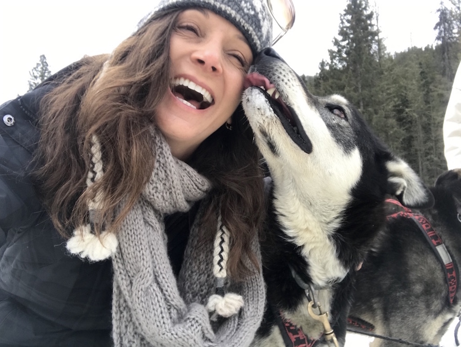 Annette White Dogsledding the Absaroka mountains in Yellowstone Country of Montana