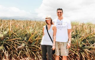 Pineapple Farm in Maui Hawaii