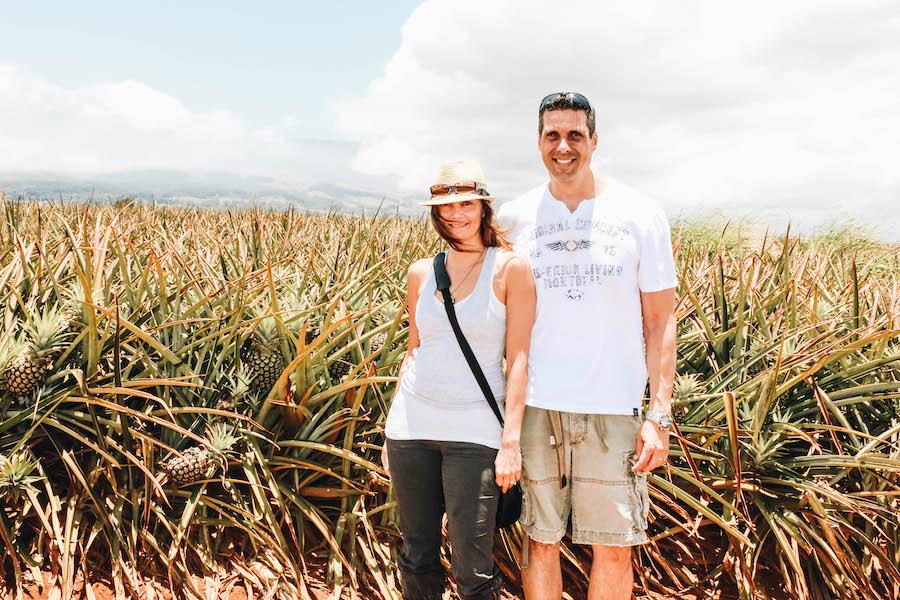 Pineapple Farm in Maui Hawaii