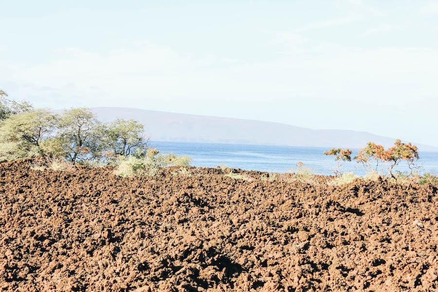 Lava Rock at Ahihi-Kinau Natural Area Reserve