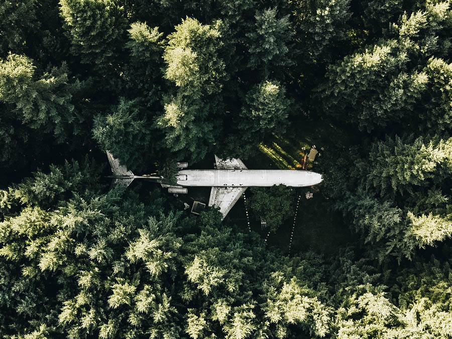See the Jetliner in the Woods